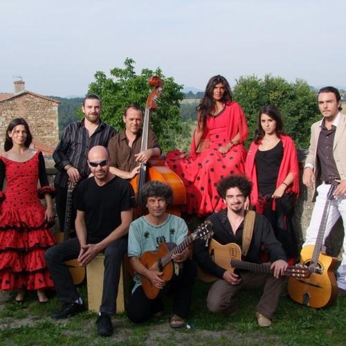 AD VERITAM Chanteuse Tzigane Manouche et Jazz Manouche en France