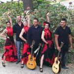 Groupe Flamenco - Gipsy / RUMBEROS DEL SUR - Beziers 34