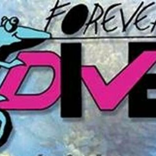 Forever Dive Nosy be - Plongée sous marine - Nosy be