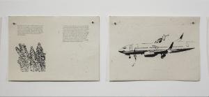 Uçan Bitkiler, Köpekler ve Filler, 2017 fil gübresinden yapılmış kağıt üzerine serigrafi baskı Fotoğraf: Rıdvan Bayrakoğlu