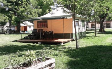 Bengali au camping Bellerive