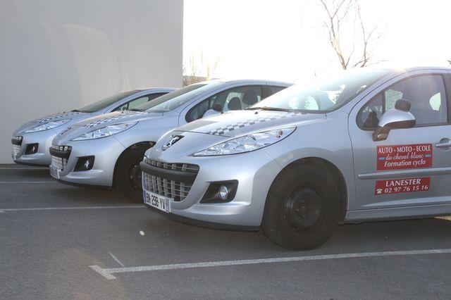 permis auto Morbihan