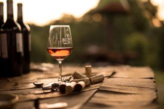 Les vignerons de Buzet sur baïse