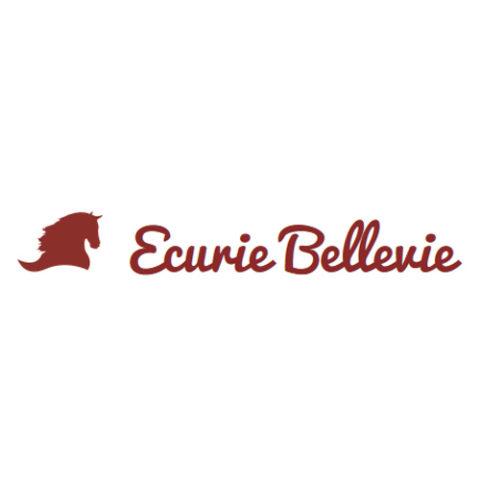 site crée par Y-Proximité agence web sur Lyon