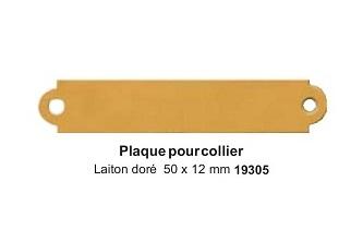 Plaque pour collier laiton doré 50x12mm réf 19305