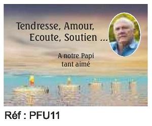 PFU11