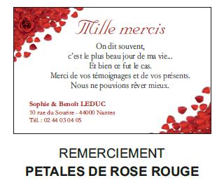 Remerciement pétales de rose rouge
