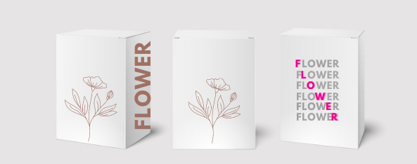 Designs et typographies minimalistes