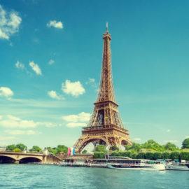 Y-Proximité - Agence web de Paris